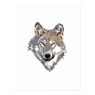 Head wolf - wolf illustration - american wolf postcard