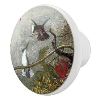 Heade Hummingbird Birds Animals Floral Knob