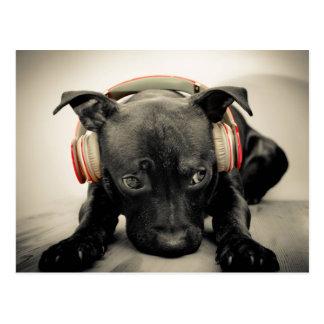 Headphones on a Black Puppy Postcard