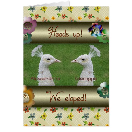 Heads Up, White Peacocks Elopement Announcement Greeting Card