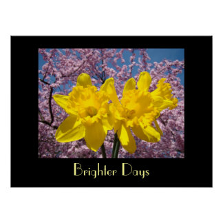 Healing Touch Art gifts Brighter Days Daffodils Poster