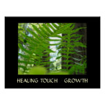 HEALING TOUCH Healthcare Art Gifts FERNS Art Print