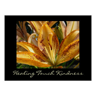 Healing Touch Kindness art prints Orange Lily Poster