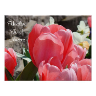 Healing Touch Nurses art print Posters Pink Tulips