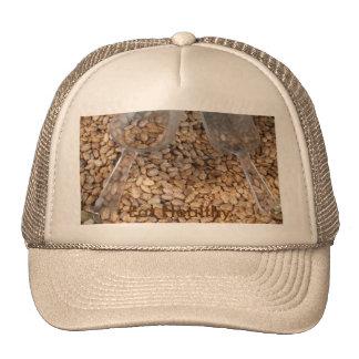 Healthy Food Trucker Hat