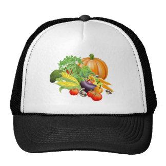 Healthy fresh produce vegetables hat