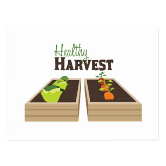 Healthy Harvest Postcard