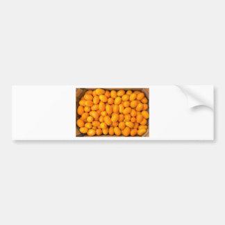 Heap of orange kumquats in cardboard box bumper sticker