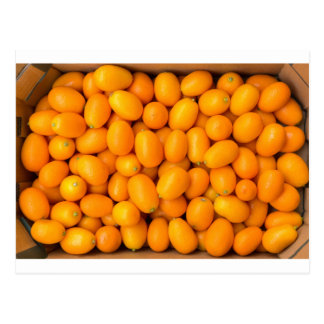 Heap of orange kumquats in cardboard box postcard