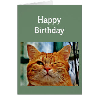 Heard it was your 30 Birthday again Fun Age Cat Card