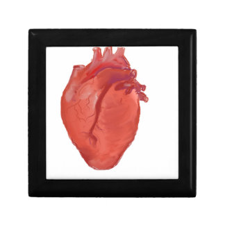 Heart Anatomy design Gift Box