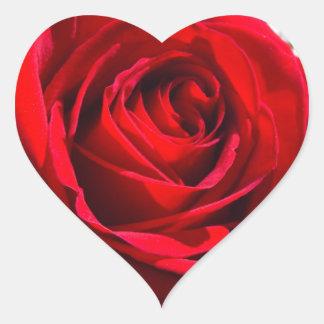 Heart Deep Red Rose Heart Sticker