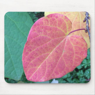 Heart Leaves of Yellow Red Green - Mouse Pad