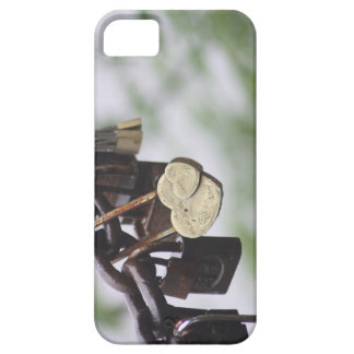Heart Lock Love to Last a Lifetime Case For The iPhone 5