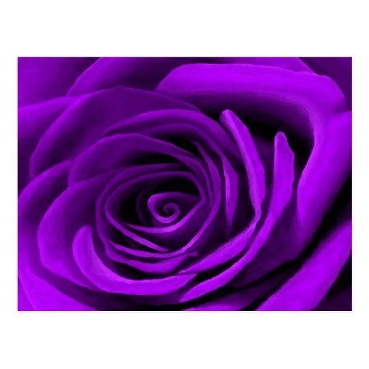 Heart Of A Purple Rose Postcard