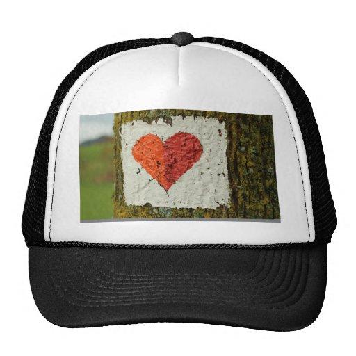 Heart of Love Mesh Hats