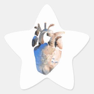 Heart of Stone Star Sticker