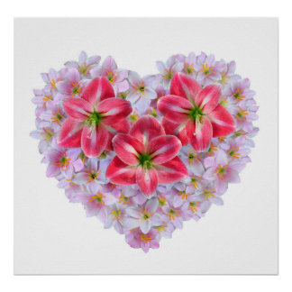 Heart shape amaryllis flower poster