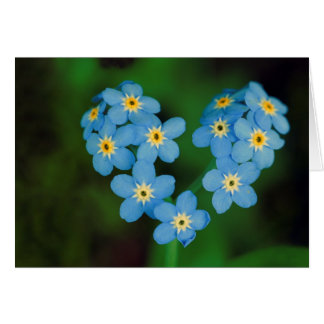 Heart Shaped Forget-me-not Flowers Cards
