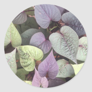 heart shaped leaves round sticker