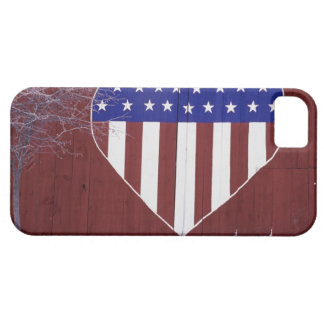 Heart-Shaped Stars and Stripes iPhone 5 Case
