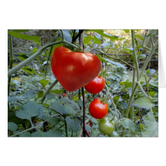 Heart Shaped Tomato no message Card