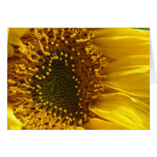 Heart Sunflower Card