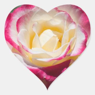 Heart Variegated Rose Heart Sticker