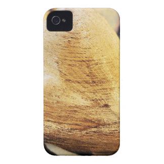 Heart Wooden Heart Hydrangea Flower Wood Love iPhone 4 Cover