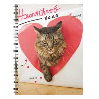 Heartthrob Cat Notebooks