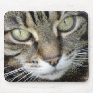Heather Cat Mouse Mat
