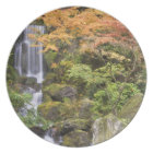 Heavenly Falls and autumn colours Plate