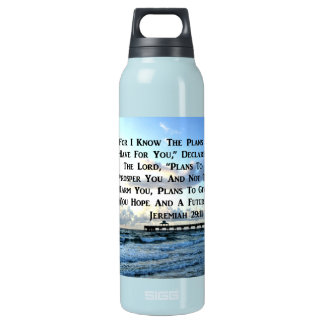 HEAVENLY JEREMIAH 29:11 SCRIPTURE DESIGN INSULATED WATER BOTTLE