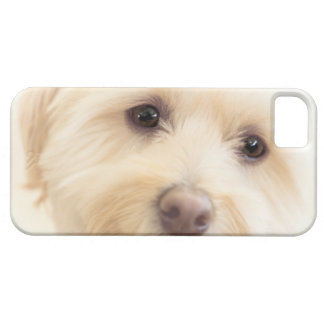 Heavenly Pup Case For The iPhone 5