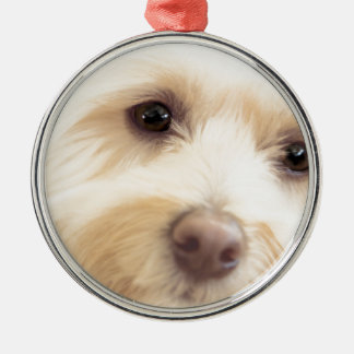 Heavenly Pup Metal Ornament