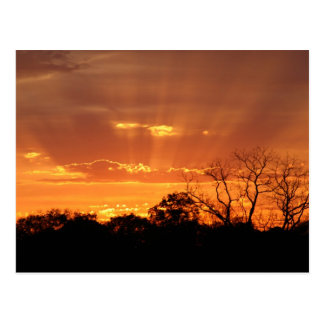"""""""heavenly sunset"""" by Coressel Productions Postcard"""