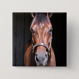 Heavenly View-Filly 2 Inch Square Button