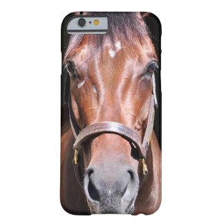 Heavenly View-Filly Barely There iPhone 6 Case