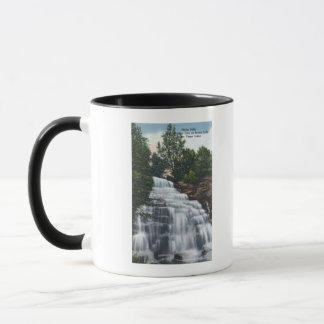 Hector Falls near Seneca Lake View Mug
