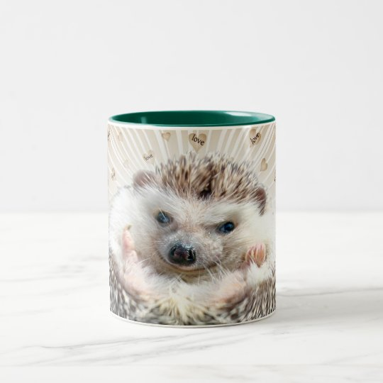 Hedgehog A Special Kind Of Love Mug