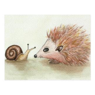 Hedgehog and Snail Postcard