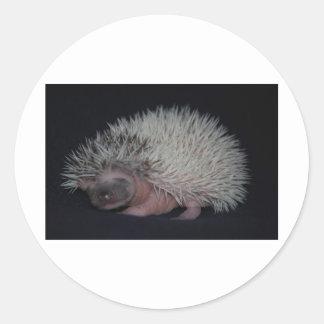 Hedgehog Baby Round Sticker