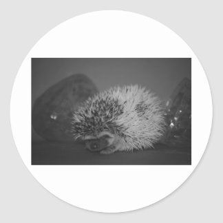 Hedgehog Baby with Easter Egg in Black and White Round Sticker