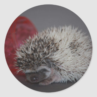 Hedgehog Baby with Easter Egg Round Sticker