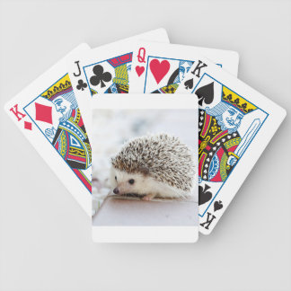 Hedgehog Bicycle Playing Cards