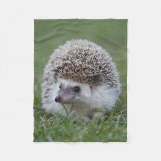 Hedgehog blanket