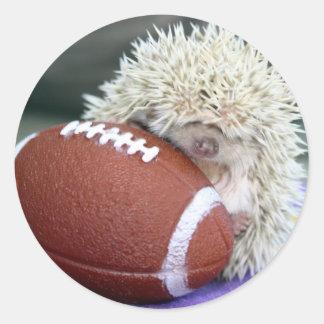 Hedgehog Football Round Sticker