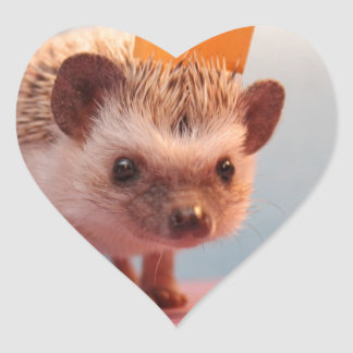 Hedgehog Happiness Heart Sticker