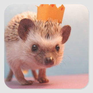 Hedgehog Happiness Square Sticker