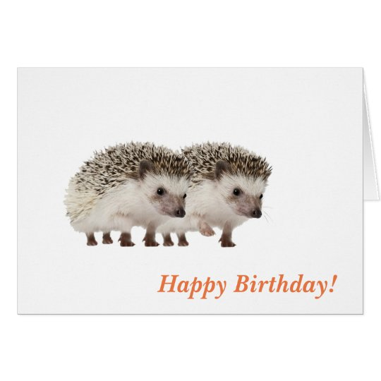 hedgehog image for Birthday greeting cards